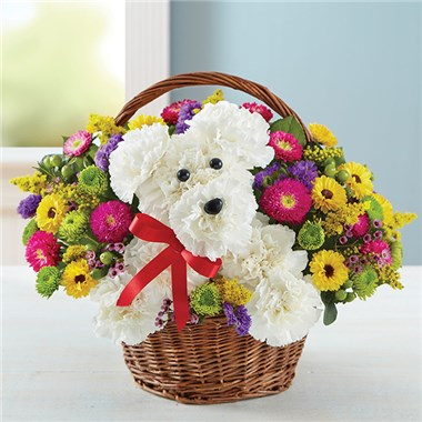 1 800 flowers a dog able in a basket o so pretty flowers 1 800 flowers a dog able in a basket mightylinksfo